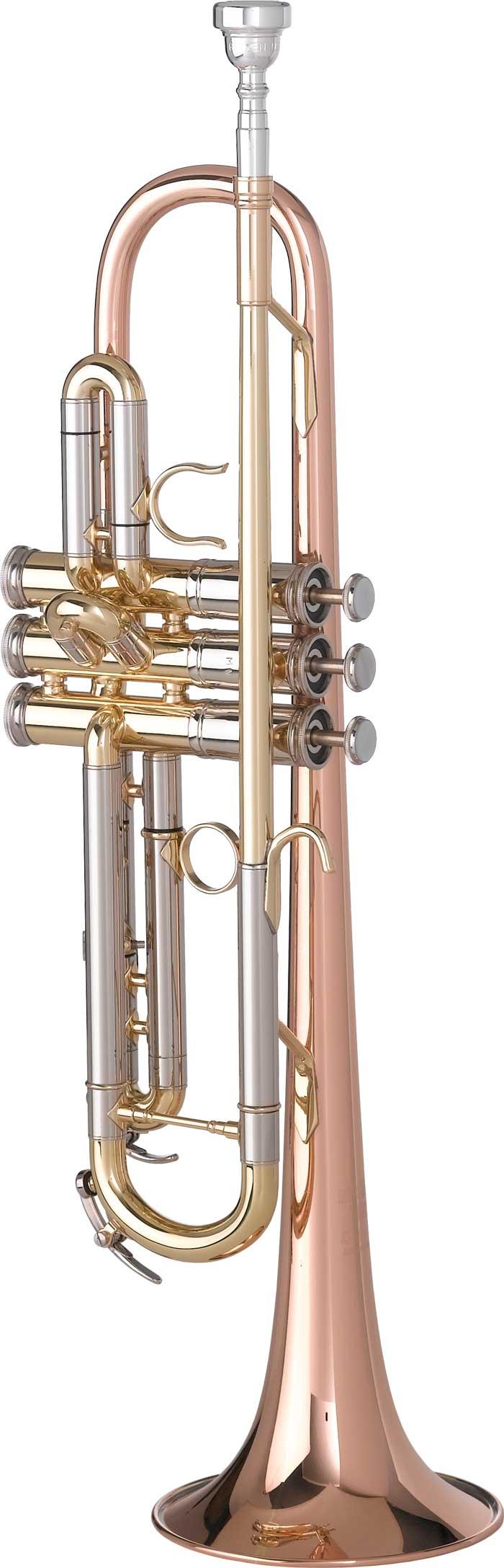 "3001MV ""Mike Vax"" Artist Model Bb Trumpet"